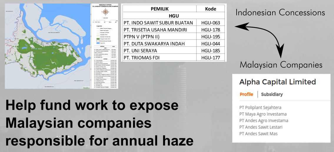 Indonesian Concessions Malaysian Companies